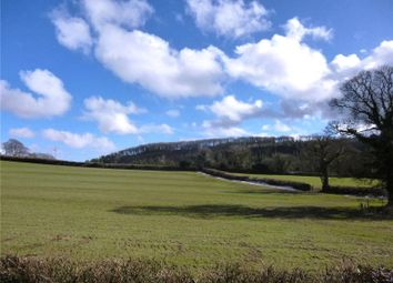 Thumbnail Land for sale in Burley Wood, Bridestowe, Okehampton