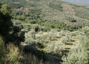 Thumbnail Land for sale in Lafkos, Pilio, Greece