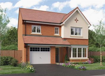 "Thumbnail 4 bed detached house for sale in ""Ashbery"" at Hastings Close, Chesterfield"