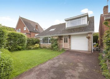 Thumbnail 3 bed detached house for sale in Buckholt Avenue, Bexhill-On-Sea