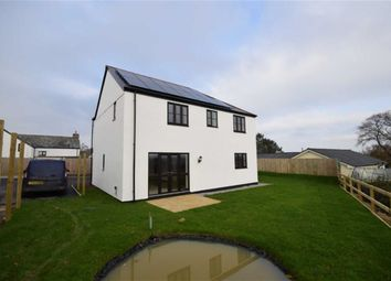 Thumbnail 4 bed detached house for sale in Pedlars Park, Launceston, Cornwall