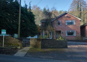 Thumbnail 4 bed detached house for sale in Hangerberry, Lydbrook, Gloucestershire.