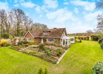Thumbnail 4 bed detached bungalow for sale in Ewhurst Lane, Northiam, Rye