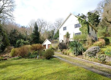 Thumbnail 5 bedroom detached house for sale in Lustleigh, Devon