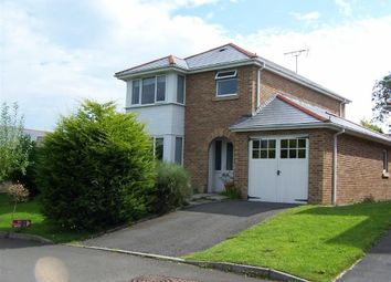 Thumbnail 3 bed detached house for sale in Cwrt Y Brenin, Ffos-Y-Ffin, Ceredigion