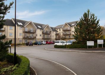 Thumbnail 1 bed flat for sale in Malmesbury Road, Chippenham, Wiltshire