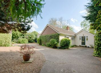 Thumbnail 3 bed detached bungalow for sale in Thrapston Road, Brampton, Huntingdon