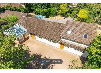 Thumbnail 6 bedroom bungalow to rent in Broomfield Court, Weybridge