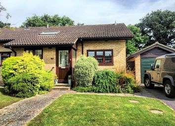 Thumbnail Property to rent in Benmore Close, New Milton, Hampshire