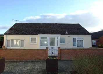 Thumbnail 3 bedroom bungalow for sale in Newmarket, Suffolk
