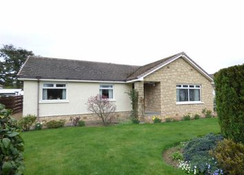 Thumbnail 3 bedroom bungalow for sale in St. Gregorys, East Scores, St. Andrews