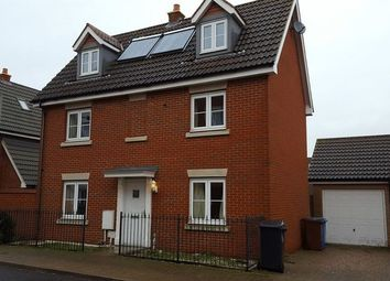 Thumbnail 4 bed detached house to rent in Provan Court, Ipswich