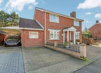 Thumbnail 4 bed detached house for sale in Ninfield Close, Carlton Colville, Lowestoft