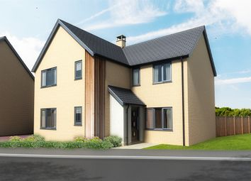 Thumbnail 4 bedroom detached house for sale in Pound Cottages, Bloomsbury Close, Oulton, Lowestoft