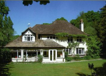 Thumbnail 4 bed detached house for sale in Ipers Bridge, Holbury, Southampton, Hampshire