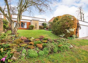 Thumbnail 4 bed detached house for sale in Chestnut Hill, Leighton Buzzard