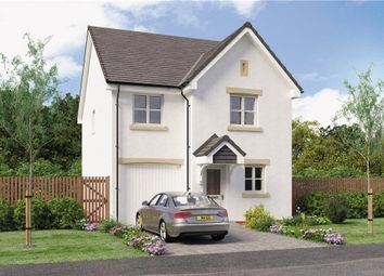 "Thumbnail 4 bedroom detached house for sale in ""Blair"" at Red Deer Road, Cambuslang, Glasgow"