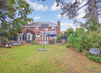 Thumbnail 5 bed detached house for sale in Apple Way, Chelmsford