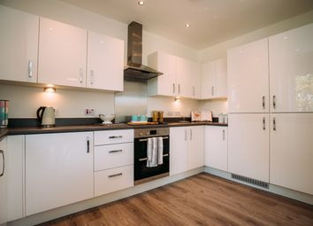 Thumbnail 2 bed flat to rent in Park Grange House, Cutlers Court, Norfolk Park