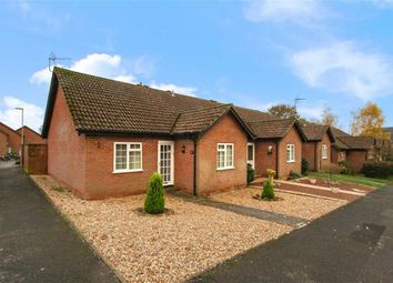 Thumbnail 2 bed bungalow for sale in Lark Rise, Liphook, Hampshire