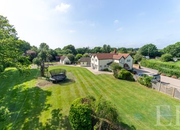 5 bed detached house for sale in Ravens Green, Little Bentley, Colchester CO7