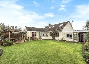 Thumbnail 4 bed detached bungalow for sale in Barcroft Crescent, Wrantage, Taunton, Somerset