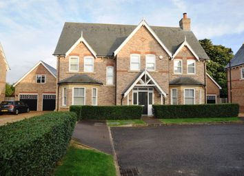 Thumbnail 5 bed property to rent in Shaftesbury Drive, Stotfold, Hitchin