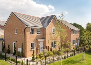 "Thumbnail 4 bed detached house for sale in ""Radleigh"" at Harland Way, Cottingham"