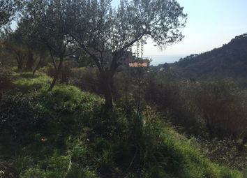 Thumbnail Land for sale in Albissola Marina, Savona, Liguria, Italy