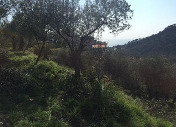Thumbnail Land for sale in Albissola Marina, Savona, Liguria, Italy
