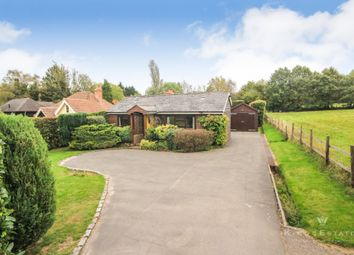 Thumbnail 3 bed detached bungalow to rent in New Road, Rotherfield, Crowborough