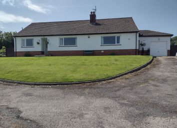 Thumbnail 4 bed bungalow for sale in Newchapel, Boncath