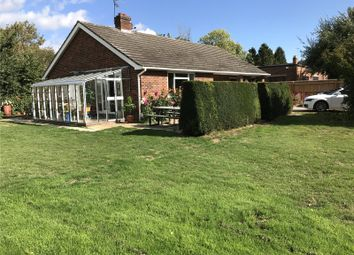 Thumbnail 2 bed detached bungalow for sale in The Street, Shurlock Row, Berkshire