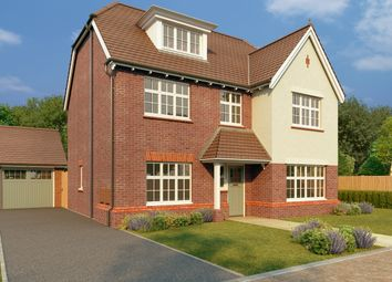 Thumbnail 5 bed detached house for sale in Westley Green, Dry Street, Basildon, Essex