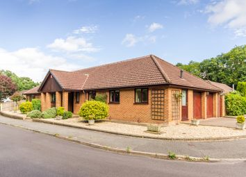 Thumbnail 4 bed detached bungalow for sale in Ashley, Ringwood, Hampshire