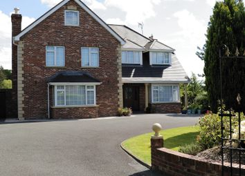 Thumbnail 7 bed detached house for sale in 54 Hollywood Grove, Newry