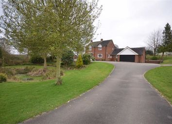 Thumbnail 4 bedroom detached house to rent in Sheepwash, Sheepwash, Caverswall