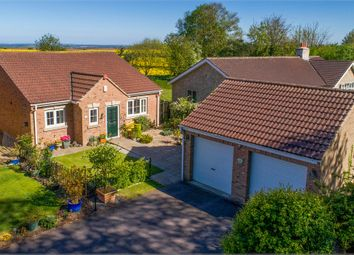 Thumbnail 3 bed detached bungalow for sale in Manor Lane, Dinnington, Sheffield