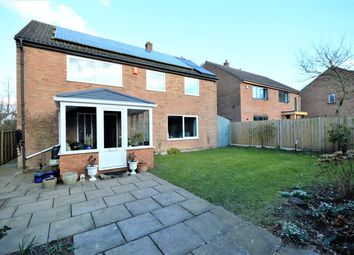 Thumbnail 5 bed detached house for sale in Beechbank, Norwich