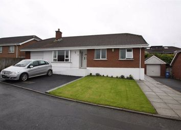Thumbnail 3 bedroom detached bungalow for sale in Clanwilliams Court, Ballynahinch, Down