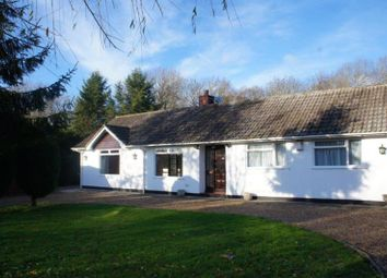 Thumbnail Bungalow to rent in Brierley, Wood End, Marston Moretaine, Beds
