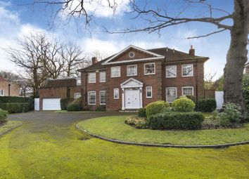 Thumbnail 5 bed detached house to rent in Winnington Road, Hampstead Garden Suburb