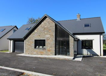 Thumbnail 5 bed detached house for sale in Lampeter Road, Tregaron