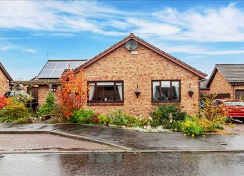 Thumbnail 3 bed bungalow for sale in North Green Drive, Airth, Falkirk