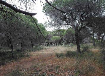 Thumbnail Land for sale in Loule, Almancil, Portugal