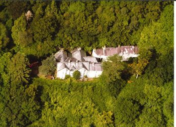 Thumbnail 9 bed country house for sale in Pentrecwrt, Llandysul
