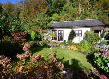 Thumbnail 2 bed bungalow for sale in Craigiemichael Cottage Shore Road, Dunoon