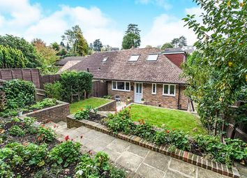 Thumbnail 4 bed bungalow to rent in Ferndale, Tunbridge Wells