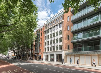 Thumbnail Studio to rent in Grays Inn Road, Chancery Lane