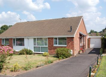 Thumbnail 2 bed bungalow to rent in Rosse Road, Tiverton, Devon